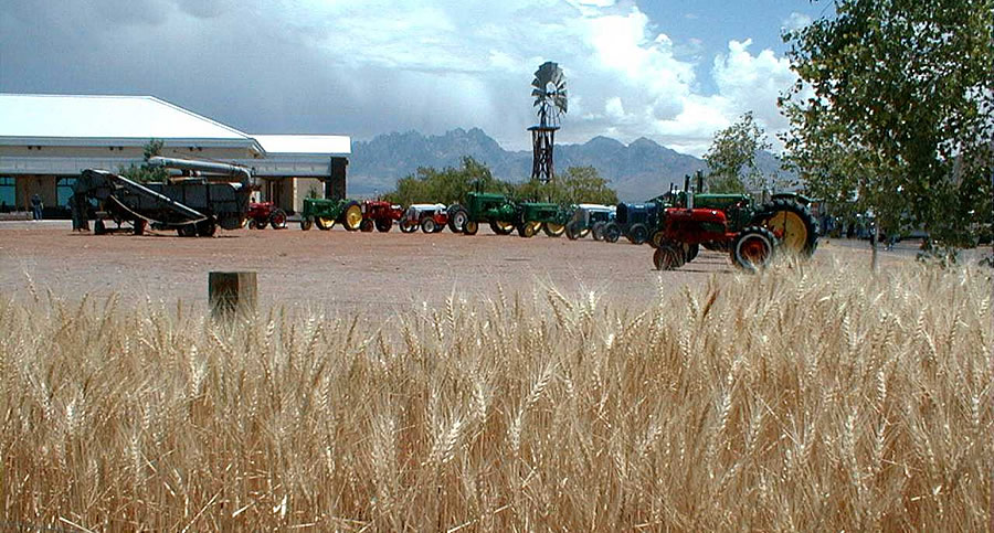 wheat - mission statement